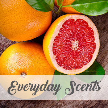 Everyday Scents
